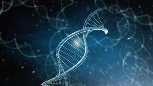 Multiple Nucleic Acid Assays