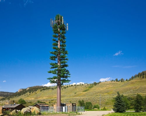 Cell phone tower disguised as tree