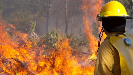 Firefighter battling wildfire as outlined in NFPA 1143-2014