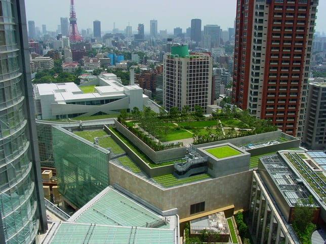 Green Roof Energy Efficiency Advantages