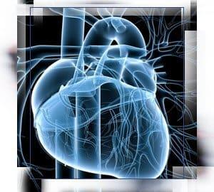 Cardiovascular Implant Standards