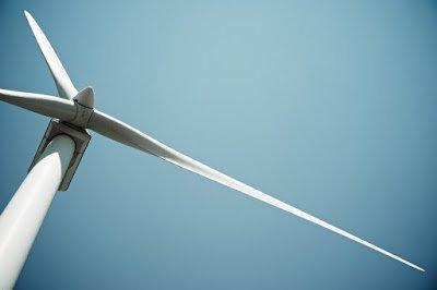 Wind Turbine Noise and Birds