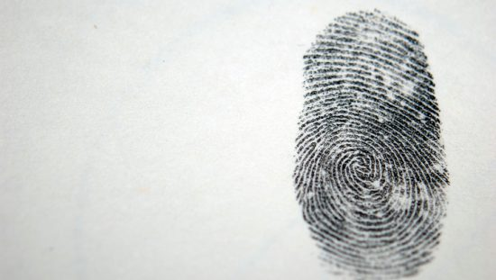 Why We Have Fingerprints and Why They Are Different