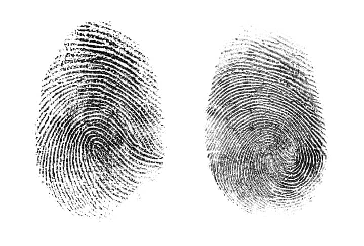Fingerprints Taken Loops