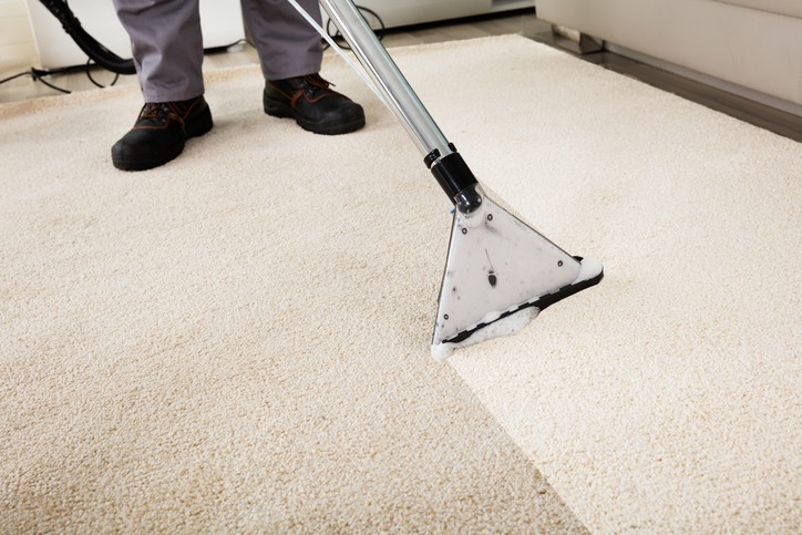 A professional following ANSI/IICRC S100-2015 to clean a carpet.