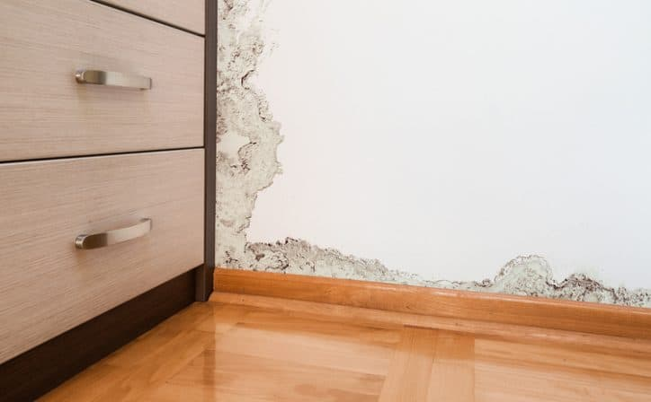 Some serious water damage on wall that needs to be repaired with ANSI/IICRC S500-2021.