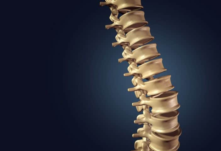 A spine showing the ASTM F1717-18 spinal implant constructs in a vertebrectomy model.