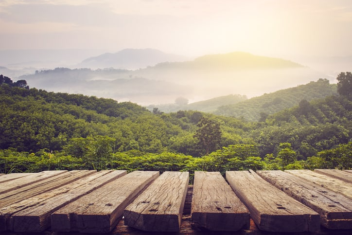 View of hills from a wooden bridge that is protected by ISO 14067 2018 compliance
