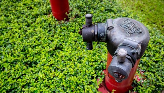 A red NFPA 14-2019 standpipe installed in greenery
