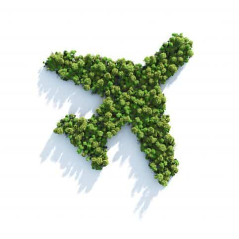 Foliage arranged in the shape of a plane, ISO/TC 238