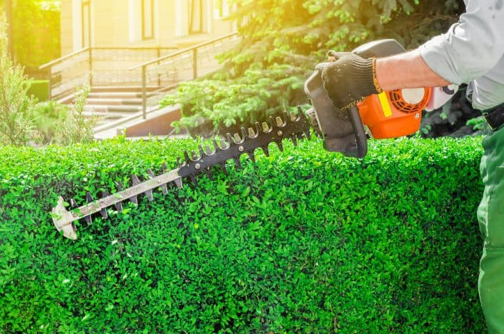 Worker using hedge trimmers covered by NAICS 333112