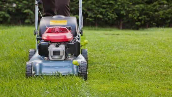 Pushing an ANSI/OPEI B71.1-2017 pedestrian controlled lawnmower over half-cut grass.