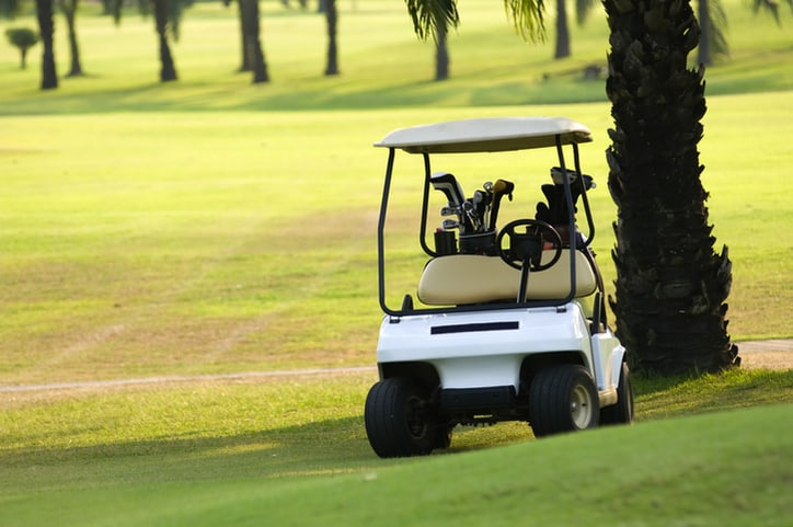 A golf cart on the green taking a break under a palm tree while following ANSI/OPEI Z130.1-2020.