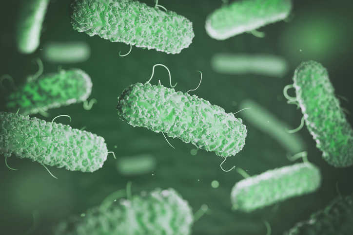 Green Legionella bacteria being prevented in water systems through ANSI/ASHRAE Standard 188-2021.